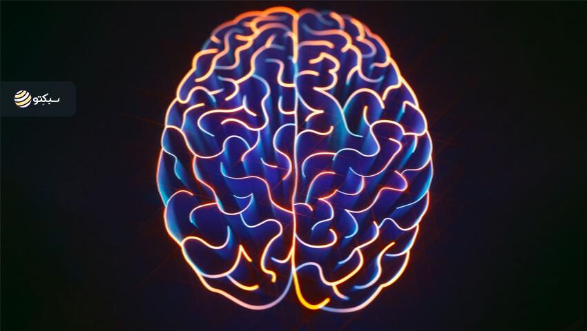 ۵ باور اشتباهی که در مورد مغز وجود دارد